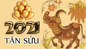 Chúc Mừng Năm Mới 2021 - Chúng Ta Cùng Nhau Trở Lại